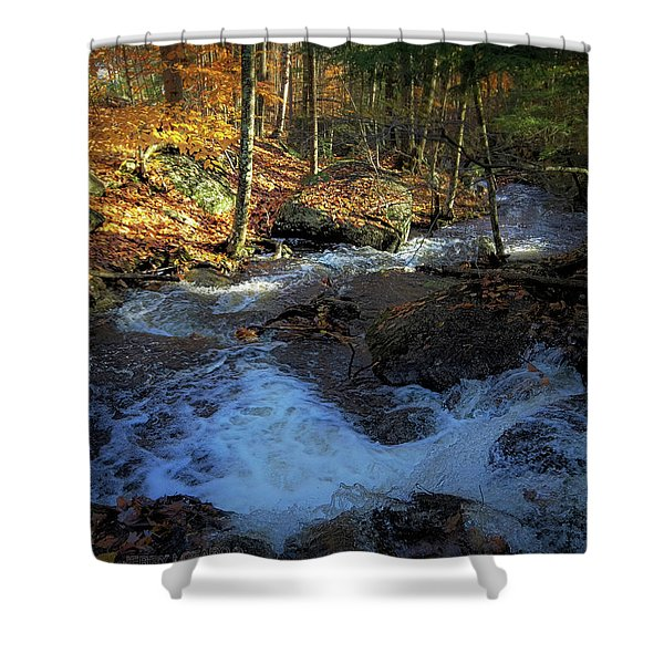 Your Morning Blessing Shower Curtain