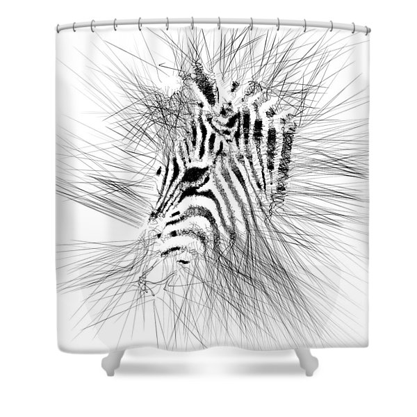 Zebrart Shower Curtain