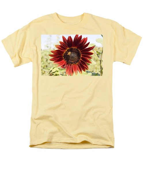 Red Sunflower And Bee Men's T-Shirt  (Regular Fit) by Kerri Mortenson
