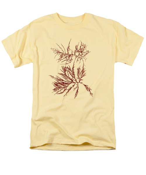 Men's T-Shirt  (Regular Fit) featuring the mixed media Ocean Seaweed Plant Art Laurencia Tenuissima by Christina Rollo