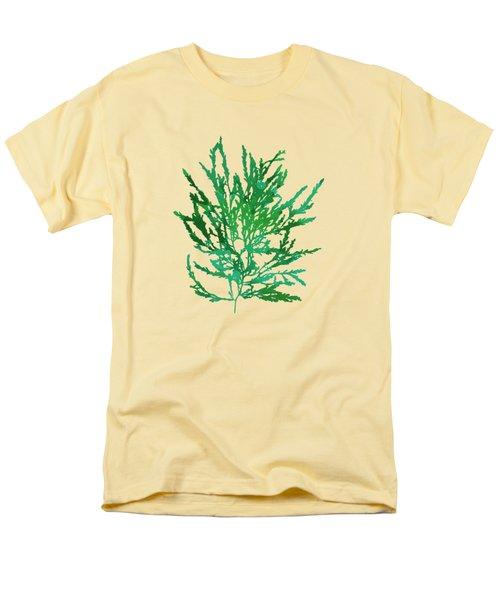 Men's T-Shirt  (Regular Fit) featuring the mixed media Sea Green Seaweed Art Odonthalia Dentata by Christina Rollo