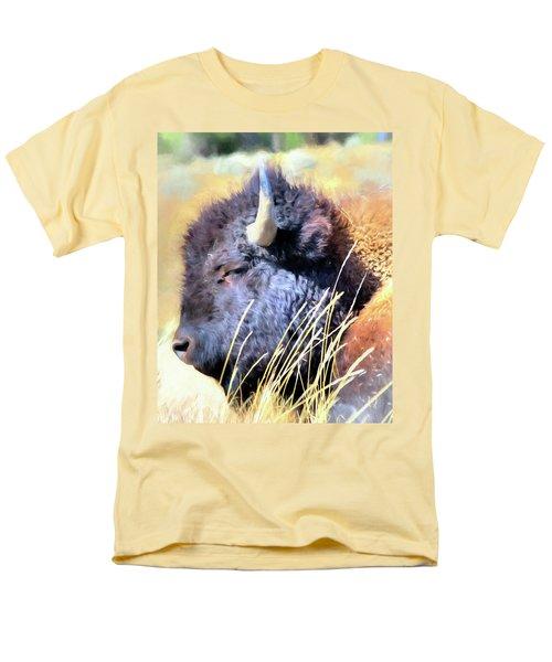 Summer Dozing - Buffalo Men's T-Shirt  (Regular Fit) by Greg Sigrist