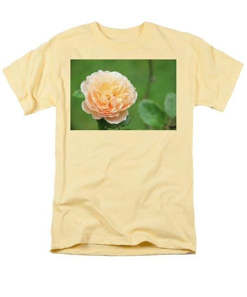 Yellow Rose In December Men's T-Shirt  (Regular Fit) by Kelly Hazel