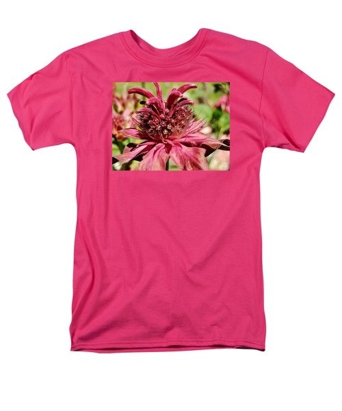 Bee Balm Details Men's T-Shirt  (Regular Fit) by VLee Watson