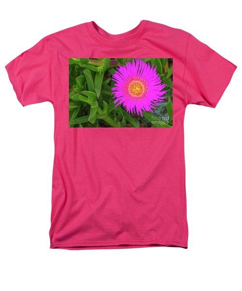 Sally-my-handsome Succulent Flower - Carpobrotus Acinaciformis Men's T-Shirt  (Regular Fit) by Jivko Nakev