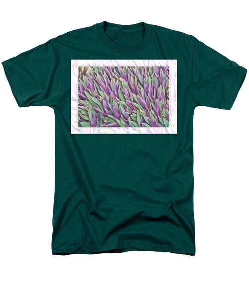 Purple And Green Men's T-Shirt  (Regular Fit) by Holly Kempe