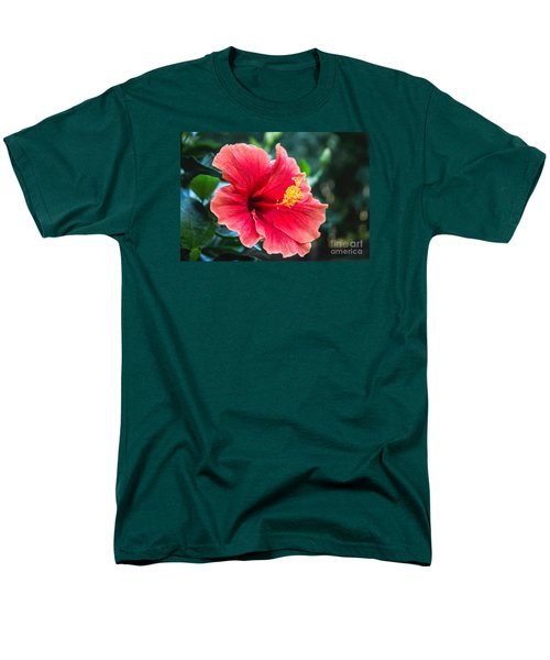 Men's T-Shirt  (Regular Fit) featuring the photograph Bold And Beautiful by Arlene Carmel