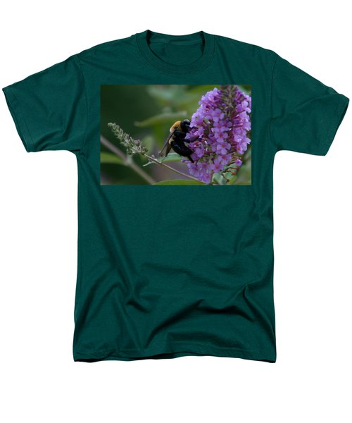 Busy Bee Men's T-Shirt  (Regular Fit) by Greg Graham