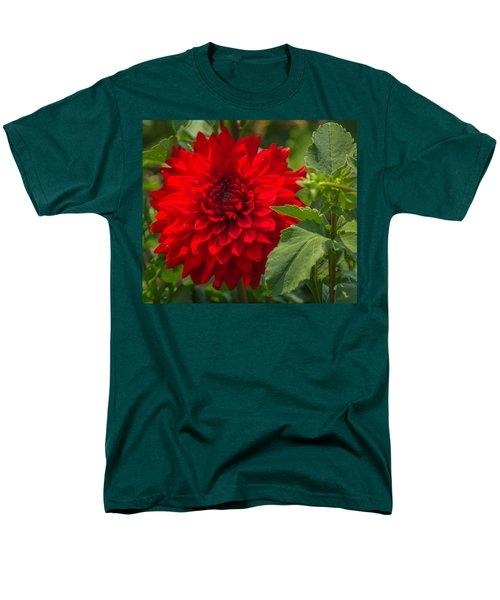 Dahlia Perfection Men's T-Shirt  (Regular Fit) by Jane Luxton