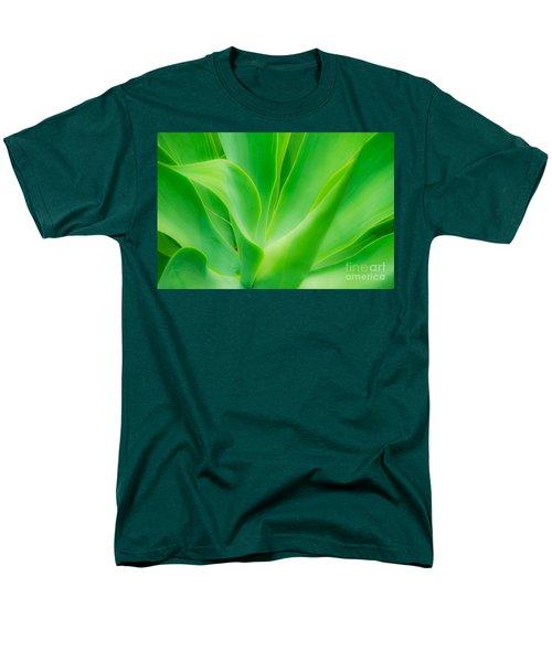 Dwarf Agave Men's T-Shirt  (Regular Fit) by David Lawson