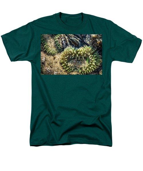 Green Sea Anemone Men's T-Shirt  (Regular Fit) by Linda Villers