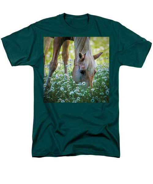 Horse And Daisies Men's T-Shirt  (Regular Fit) by Paul Freidlund