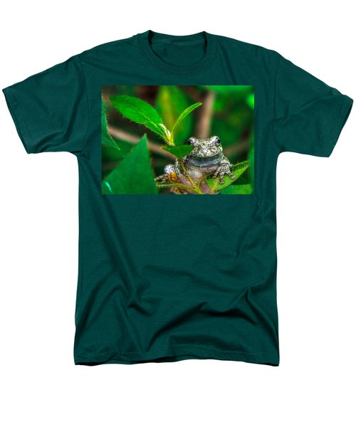 Hyla Versicolor Men's T-Shirt  (Regular Fit) by Rob Sellers