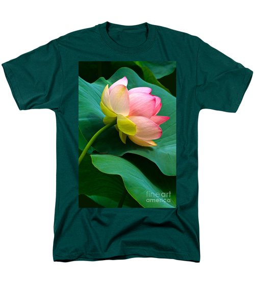 Lotus Blossom And Leaves Men's T-Shirt  (Regular Fit) by Byron Varvarigos