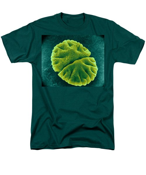 Men's T-Shirt  (Regular Fit) featuring the photograph Micrasterias Angulosa, Algae, Sem by Science Source