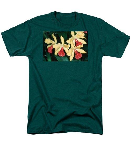 Orchid 11 Men's T-Shirt  (Regular Fit)
