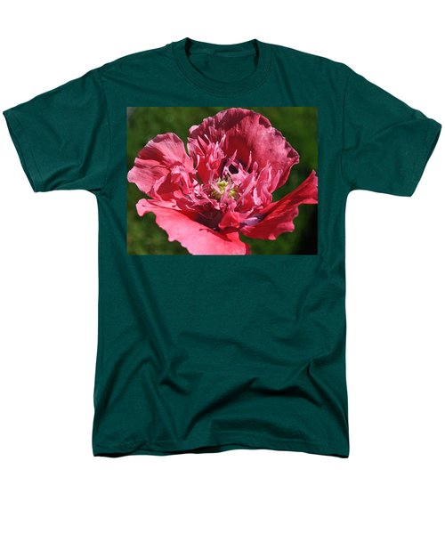Poppy Pink Men's T-Shirt  (Regular Fit)
