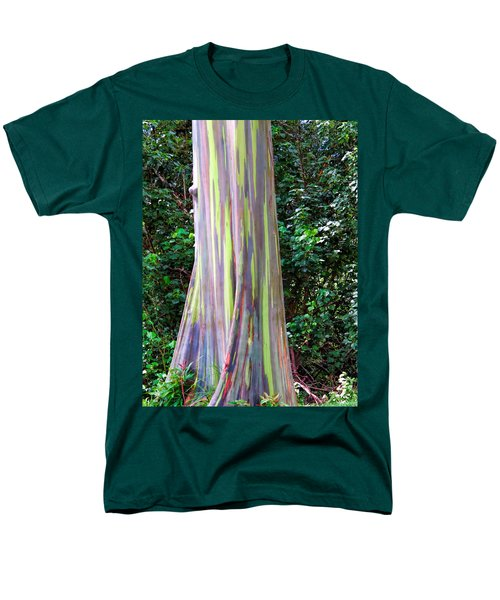 Rainbow Eucalyptus 3 Men's T-Shirt  (Regular Fit) by Dawn Eshelman
