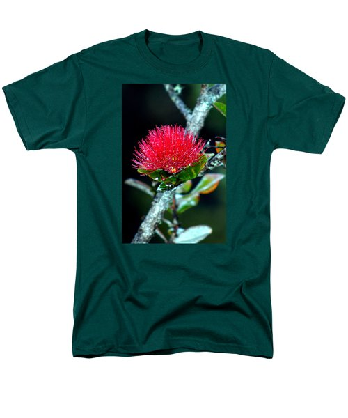 Red Ohia Lehua In Hawaii Volcano Mist Men's T-Shirt  (Regular Fit) by Lehua Pekelo-Stearns