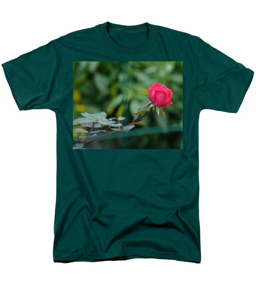 Men's T-Shirt  (Regular Fit) featuring the photograph Red Rose I by Lisa Phillips