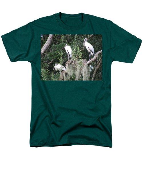 Three Wood Storks Men's T-Shirt  (Regular Fit) by Ellen Meakin