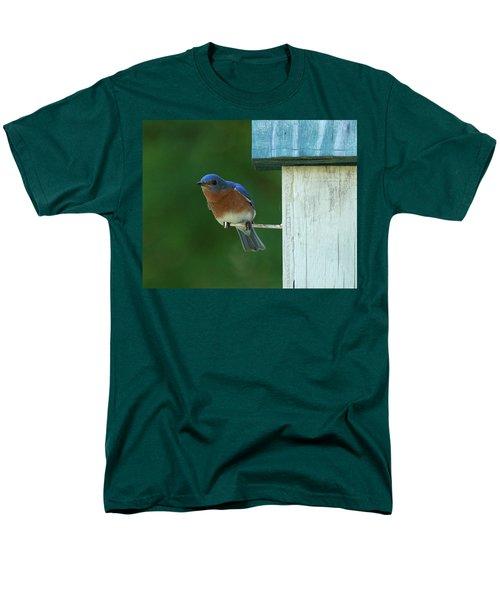 Bluebird Men's T-Shirt  (Regular Fit)