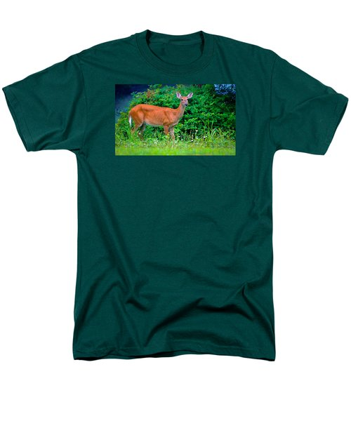 Dusk Deer Men's T-Shirt  (Regular Fit) by Brian Stevens