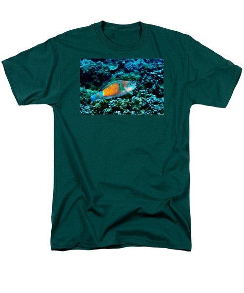 Fla-150811-nd800e-26049-color Men's T-Shirt  (Regular Fit) by Fernando Lopez Arbarello