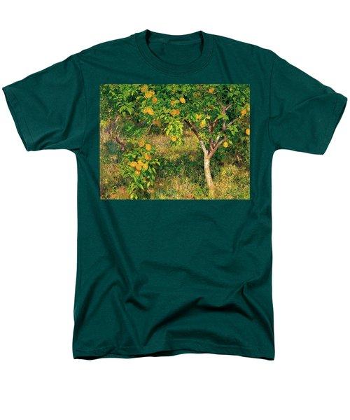 Men's T-Shirt  (Regular Fit) featuring the painting Lemon Tree by Henry Scott Tuke