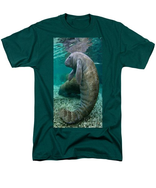 Manatee In Crystal River Florida Men's T-Shirt  (Regular Fit) by Merton Allen