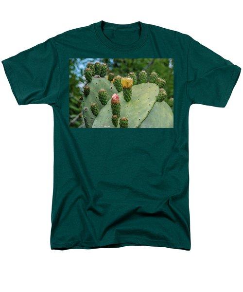 Opuntia Cactus Men's T-Shirt  (Regular Fit)