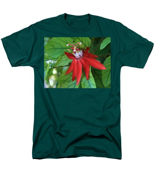 Men's T-Shirt  (Regular Fit) featuring the photograph Red Passion by Marna Edwards Flavell