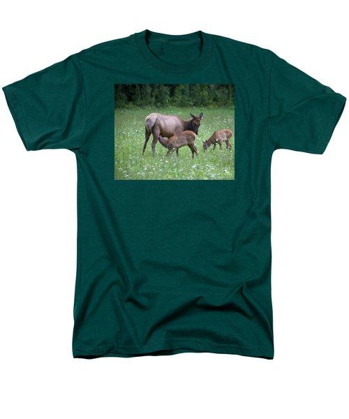 Smoky Mountain National Park Elk Cow Nursing Calf Men's T-Shirt  (Regular Fit)