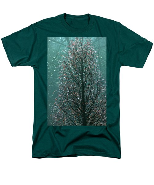 Tree In Autumn, With Red Leaves, Blue Background, Sunny Day Men's T-Shirt  (Regular Fit) by Emanuel Tanjala