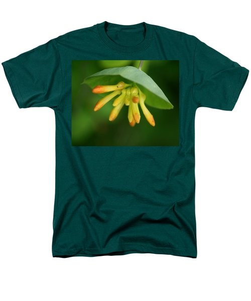 Men's T-Shirt  (Regular Fit) featuring the photograph Umbrella Plant by Ben Upham III