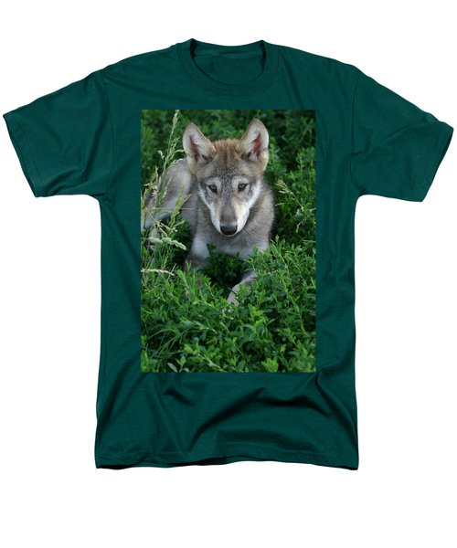 Men's T-Shirt  (Regular Fit) featuring the photograph Wolf Pup Portrait by Shari Jardina
