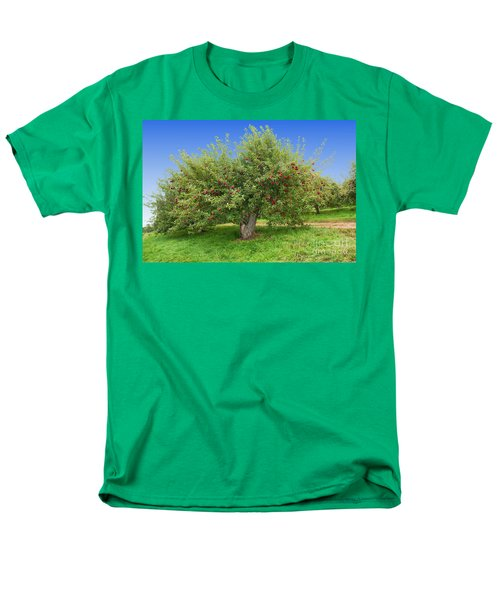 Large Apple Tree Men's T-Shirt  (Regular Fit) by Anthony Sacco