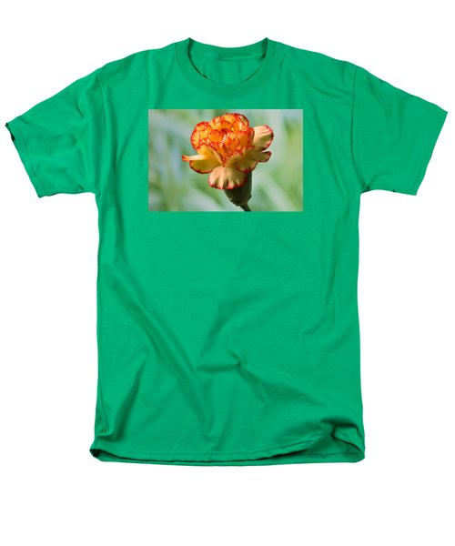 Colour Burst Men's T-Shirt  (Regular Fit) by Terence Davis
