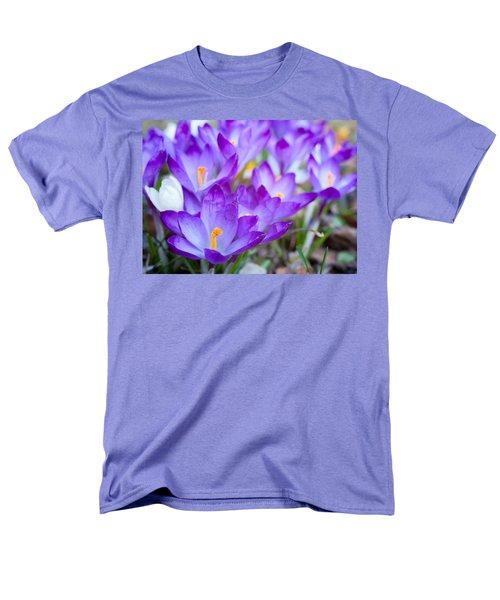 Signs Of Spring Men's T-Shirt  (Regular Fit)