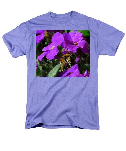 Bee Feeding On Purple Flower Men's T-Shirt  (Regular Fit) by John Topman