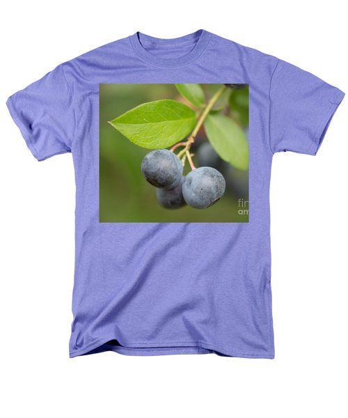Berrydelicious Men's T-Shirt  (Regular Fit) by Kim Henderson