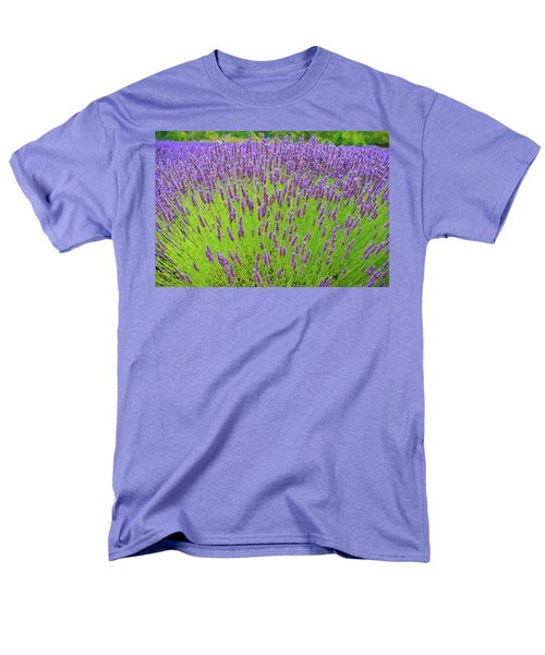 Lavender Gathering Men's T-Shirt  (Regular Fit) by Ken Stanback