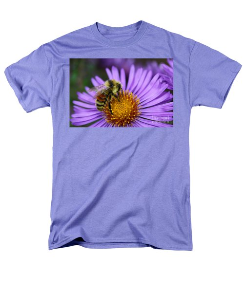 New England Aster And Bee Men's T-Shirt  (Regular Fit) by Steve Augustin