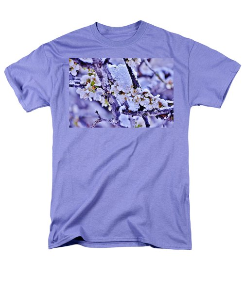 Plum Blossoms In Snow Men's T-Shirt  (Regular Fit)
