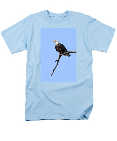 Bald Eagle 6 Men's T-Shirt  (Regular Fit) by David Lester