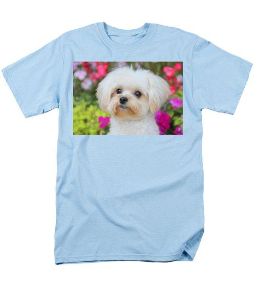 Amidst Men's T-Shirt  (Regular Fit) by Nick David