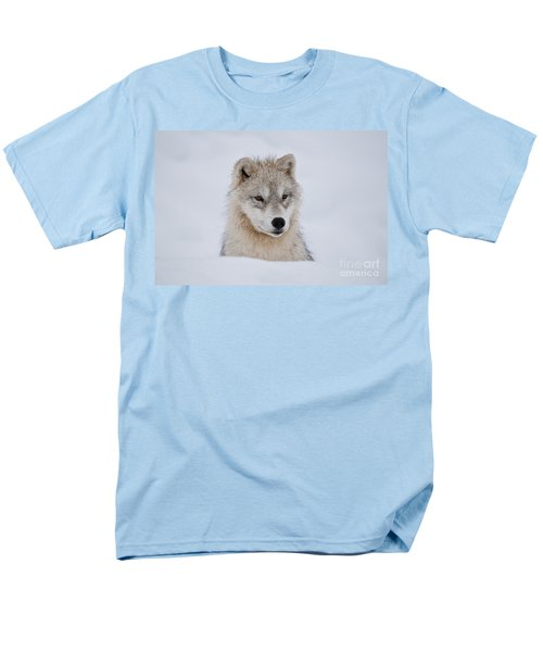 Arctic Pup In Snow Men's T-Shirt  (Regular Fit) by Wolves Only