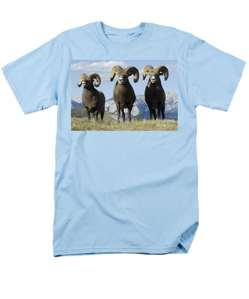 Big Horn Sheep Men's T-Shirt  (Regular Fit) by Bob Christopher