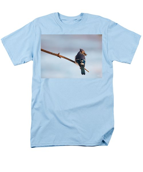 Blue Jay With Nuts Men's T-Shirt  (Regular Fit)