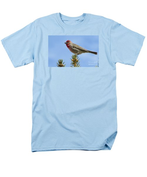 Men's T-Shirt  (Regular Fit) featuring the photograph Cassin's Finch  by Janice Westerberg